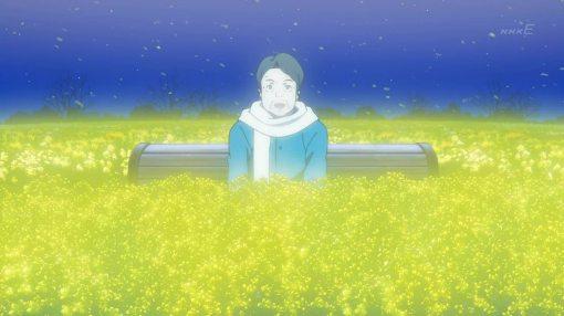 the-rape-flower-field